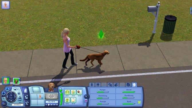 Frische Luft schnappt euer Sim entweder bei einem gemütlichen Hundespaziergang...
