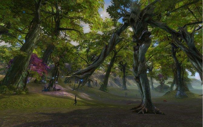 Hier seht ihr den Silberwald