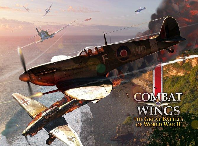 In Combat Wings...