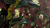 Morphopolis - Launch Trailer