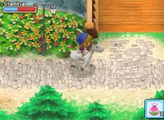 Harvest Moon DS - Der Großbasar (Trailer)