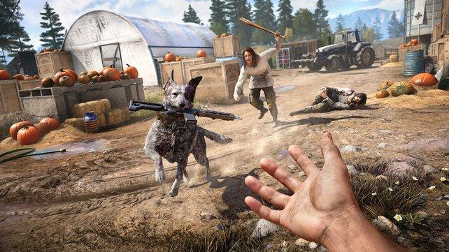 Bring ... ähm, Stöckchen? Die Spezialisten in Far Cry 5 sind mitunter auch Vierbeiner.