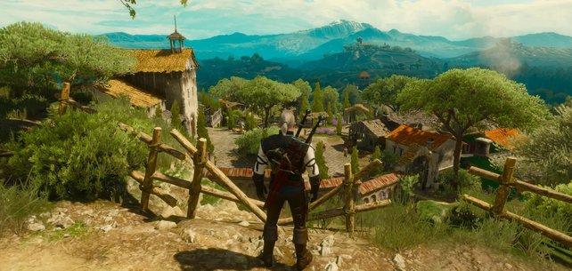 Geralt muss sich für diesen Erfolg als Streitschlichter beweisen.