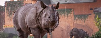 Planet Zoo | Community sehnt sich nach mehr Leaks