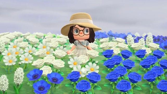 Tobt euch mit den Blumen kreativ aus und verschönert so eure Insel.