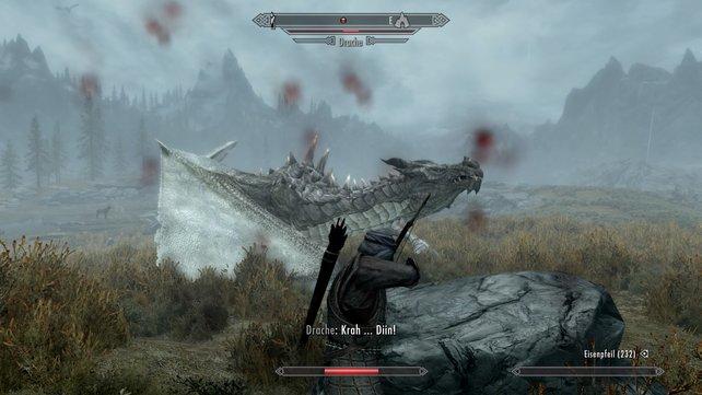 Wegen Sonys strengen Regeln können Drachen auf der PS4 nicht zum Zug oder Pony werden.