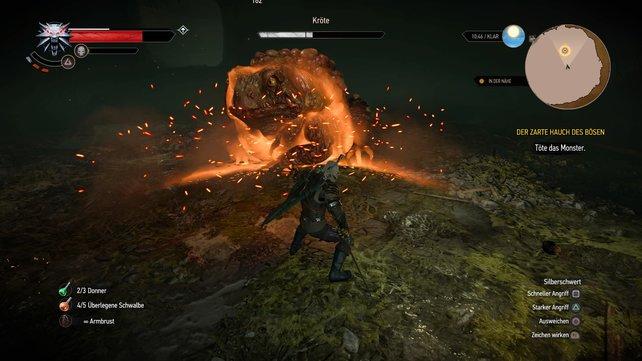 Igni kann eine wervolle Option im Kampf sein.