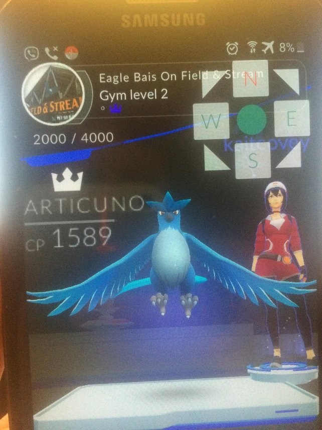 Ein Arktos in einer Arena. Quelle: http://www.siliconera.com/2016/08/02/people-spotted-articuno-pokmon-go-gym-now-internet-fire/