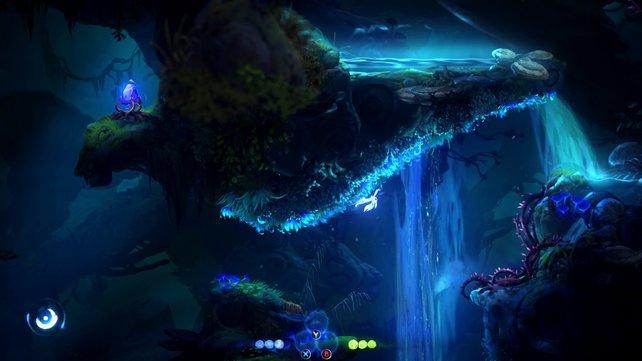 Blaues Moos lässt euch auch überkopf klettern.