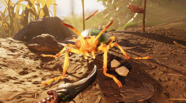 Für dieses Spiel solltet ihr besser keine Angst vor Insekten haben.