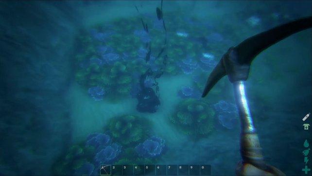 So sieht bei ARK: Survival Evolved eine Quelle für Öl aus.