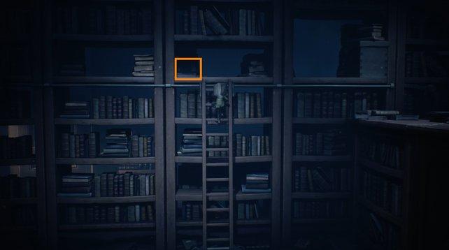 Im mittleren Regal findet ihr einen süßen Hut, hier orange markiert.