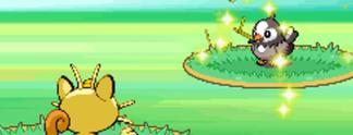 Pokémon-Quiz: Was sind wirkliche Pokémon-Attacken?