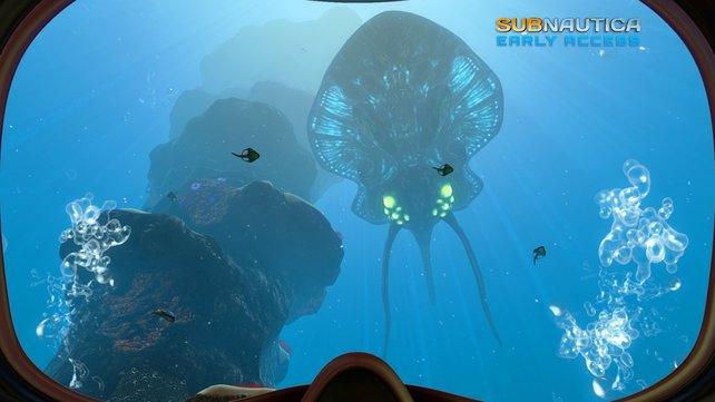 """Wer den Ozean erforscht, wird mitunter auf exotische Schönheiten wie diese hier stoßen. Erinnert ein wenig an den Film """"The Abyss""""."""
