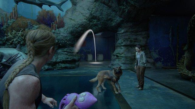 Spielt ein wenig mit Alice, indem ihr die Tintenfischpuppe aufnehmt und sie in den Gang werft, damit Alice apportieren kann.