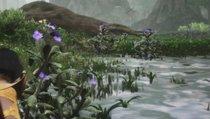 Fundorte der Lotus-Blüten