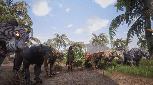 Bei so einer Gang überlegt man sich zweimal, ob man angreifen sollte. Dafür müsst ihr in Conan Exiles lernen, wie man Tiere zähmen kann.
