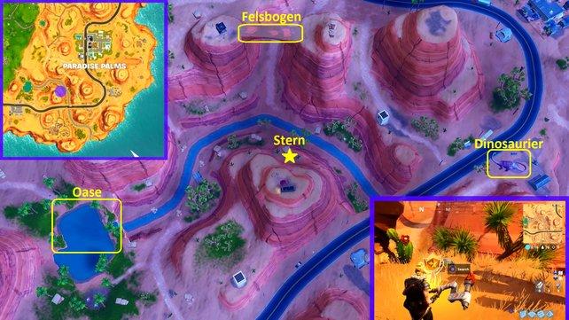 Am Fuße des Berges ragt ein Stein neben zwei Kakteen aus dem Boden. Hier findet ihr den Battle-Stern zwischen einer Oase, einem Felsbogen und Dinosauriern.