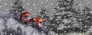 Specials: Winter is coming: 10 Spiele, in denen euch Schnee auf die Probe stellt!