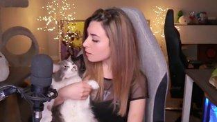 Katzenwerfende Streamerin entschuldigt sich