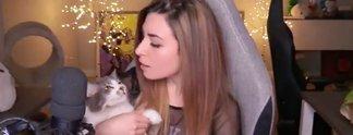 Panorama: Katzenwerfende Streamerin entschuldigt sich