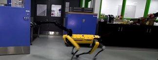 Panorama: Roboter lässt sich vom Menschen nicht aufhalten