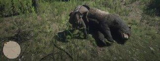 Red Dead Redemption 2: Dieser Spieler hat die Jagd perfektioniert