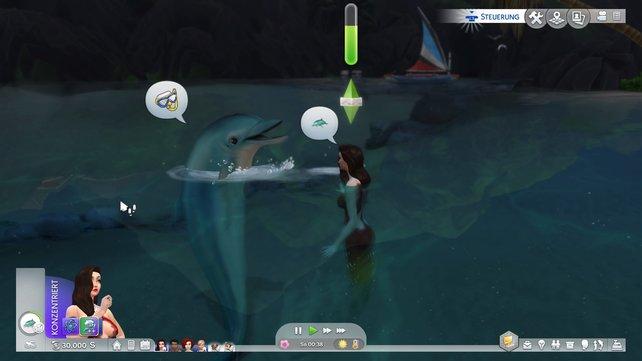 In der Insellebenerweiterung könnt ihr mit Delfinen Freundschaft schließen.