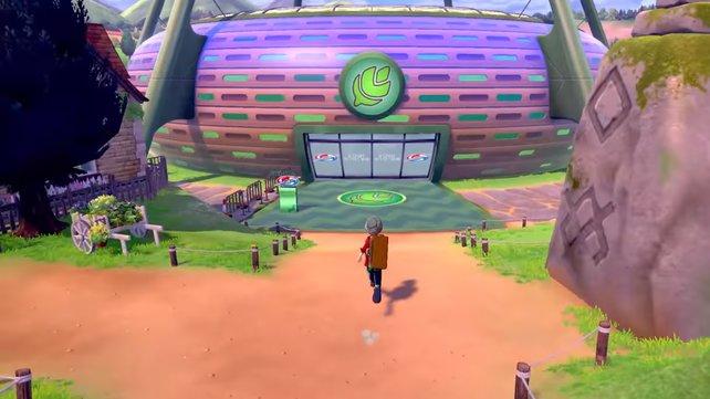 Der erste Arenaleiter setzt wahrscheinlich Pflanzen-Pokémon ein.