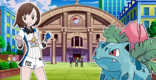 Pokémon-Fans wünschen sich ein Feature, das das Endgame aufwerten würde.
