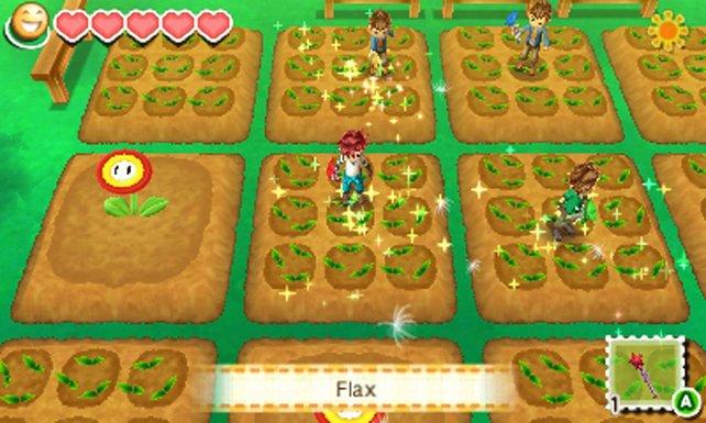 Sieht das nicht toll aus? Die Feuerblume entfernt das Unkraut auf den Feldern.