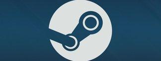 Steam | Lokale Multiplayer-Spiele einfach online zocken