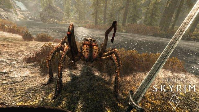 In Skyrim VR wirken Monster weitaus bedrohlicher, doch die Umgebung erscheint unscharf.