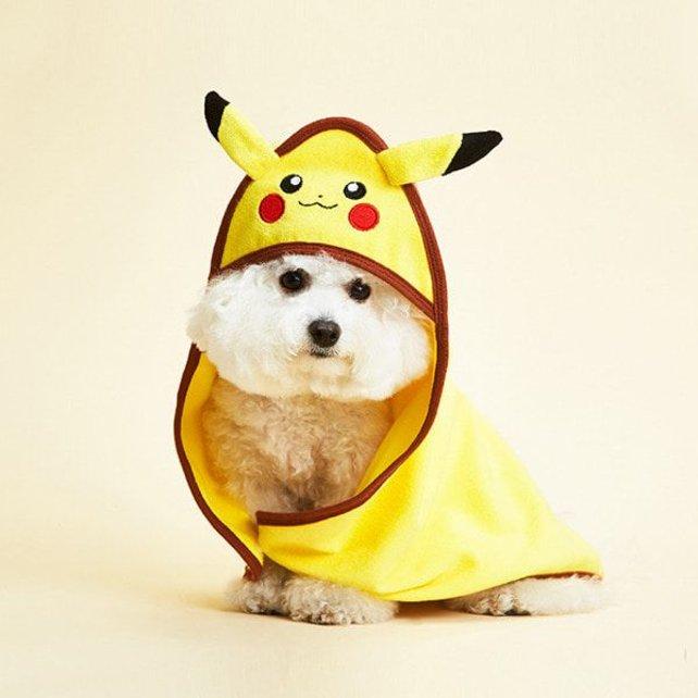 """""""Guten Tag, der Herr, einen feinen Pikachu haben Sie da an!"""" Quelle: Dasom/The Pokémon Company"""