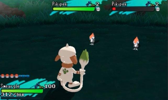 Zitterorb sei dank: Peppeck ruft einen Mitstreiter zur Hilfe - leider aber kein Shiny-Pokémon.