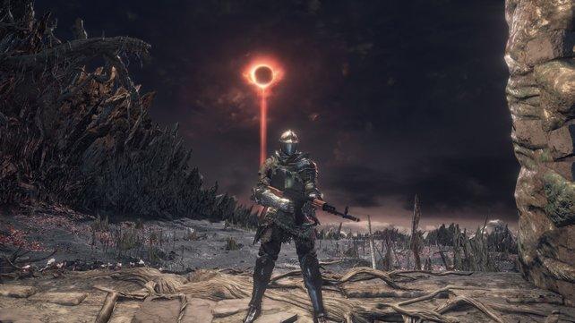 So richtig passt es nicht, unterhaltsam ist es aber trotzdem: Dark Souls mit Sturmgewehren.