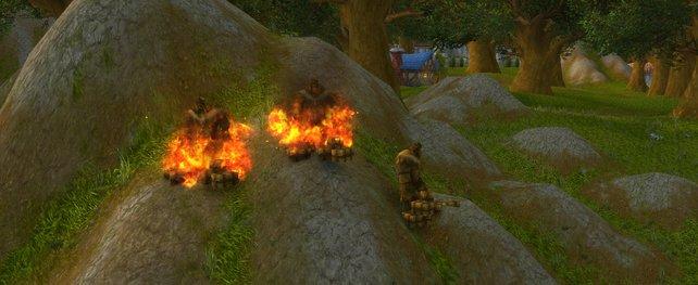 Eine Quest verlangt von euch, die Feuer zu löschen. Schnappt euch dafür einen Wassereimer und erledigt dies.