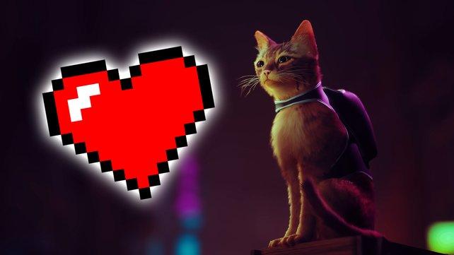 Wer hätte gedacht, dass ein Katzenspiel für die Next-Gen-Konsolen so viele Leute in seinen Bann zieht! (Bild: Annapurna Interactive / Pixabay – Ben Bushnell)