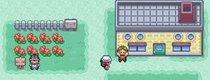 Heiratsantrag in Pokémon: Dieser Mann baut die Blattgrüne Edition für seine Liebste um