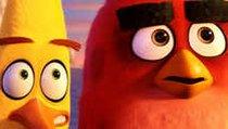 """<span></span> Wütende Vögel und grüne Schweine: Das erste Video zum """"Angry Birds""""-Film"""