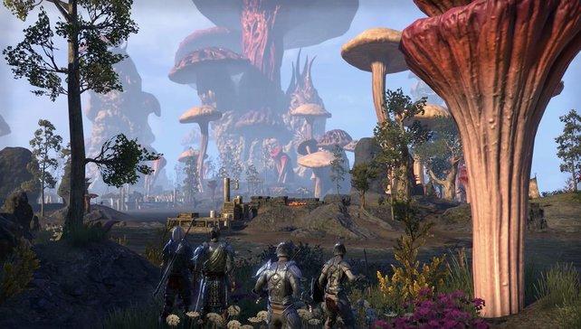 Einzigartig: Die Gestaltung von Morrowind geizt nicht mit fremdartiger Schönheit.