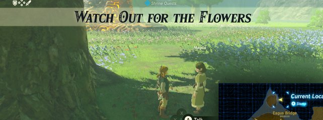 Breath Of The Wild Schreine Karte.Zelda Breath Of The Wild Schreine Alle Fundorte Tipps Und