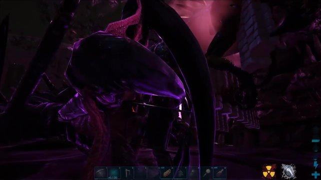So sieht die Befruchtung der Reaper Queen aus.