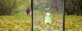 Witziger Glitch zeigt Pokébälle als Pokémon an