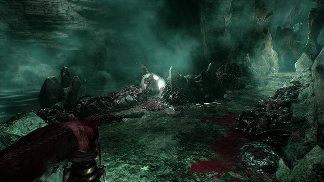 Haifisch- und Wal-Kadaver in einer finsteren Höhle. Seht ihr die wirklich oder handelt es sich um eine düstere Vision?