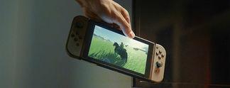 Panorama: Nintendo Switch: Konsole überlebt Sturz aus knapp 300 Metern Höhe