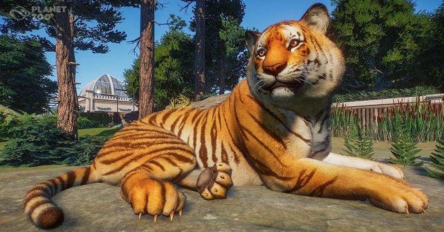 Planet Zoo erfreut viele Spieler. Jetzt hilft das Spiel auch einem guten Zweck.