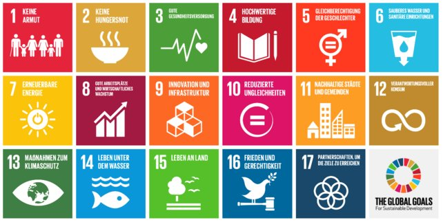 Das sind die Ziele der Organisation. Quelle: The Global Goals