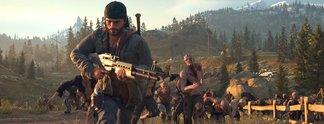 Days Gone: Saber Interactive wollte einen Mehrspieler-Modus entwickeln