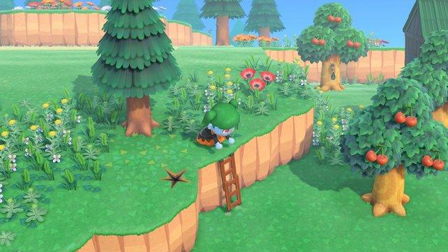 Die Leiter ist ein Muss für jeden Inselbewohner in Animal Crossing: New Horizons.